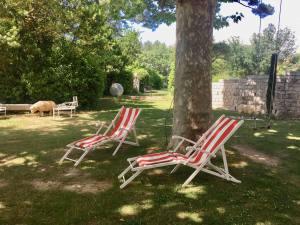 Les Aixaltantes, un dimanche sport et bien être à côté d'Aix-en-Provence (jardin)
