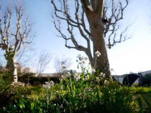 3bisF, centre d'art contemporain à Aix-en-Provence