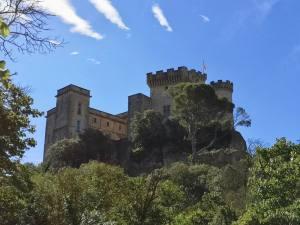 Rocher Mistral, le nouveau projet du Château de la Barben (construction médiévale)