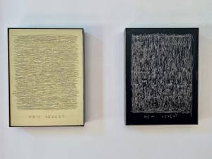 Habiter la terre, exposition de Rubén Martín De Lucas à L'Hôtel de Gallifet (œuvres)
