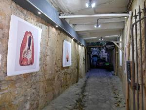 Galerie Parallax, photo exhibitions in Aix-en-Provence (expo extérieure)