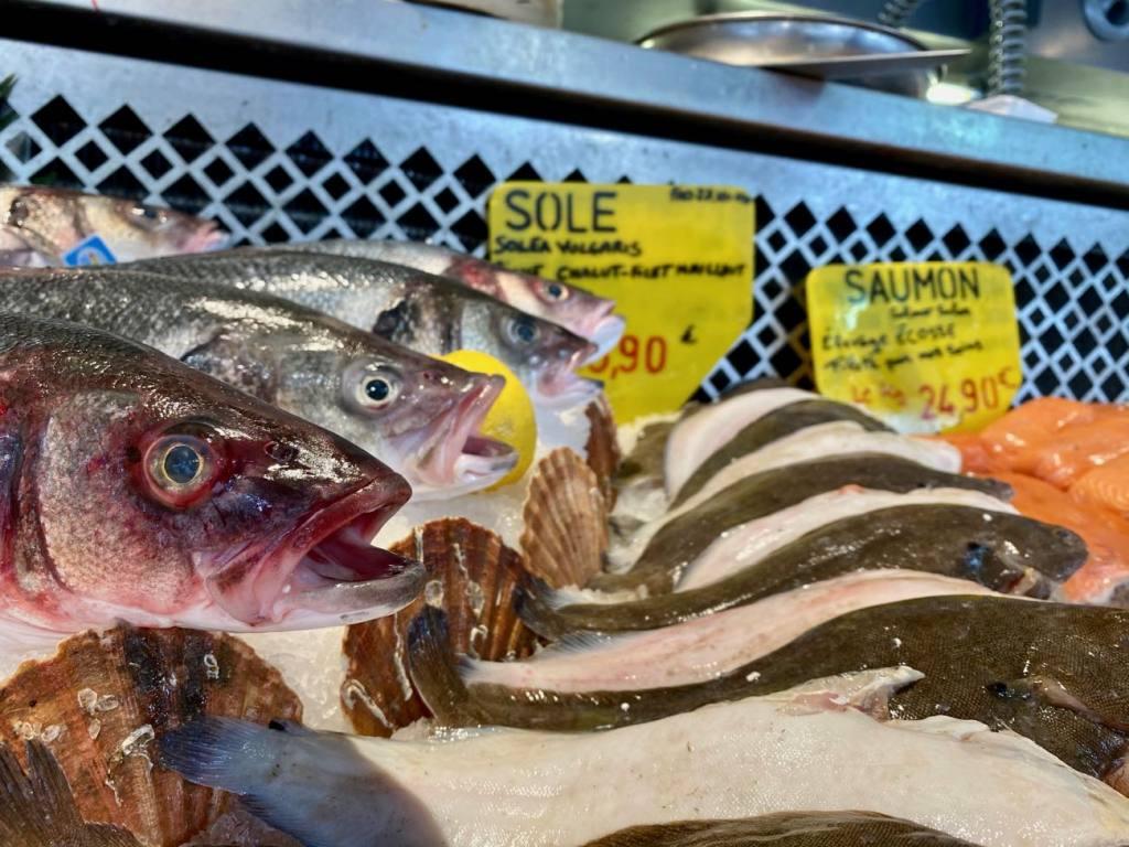 Toinou, sea food, Aix-en-provence, love-spots, fish