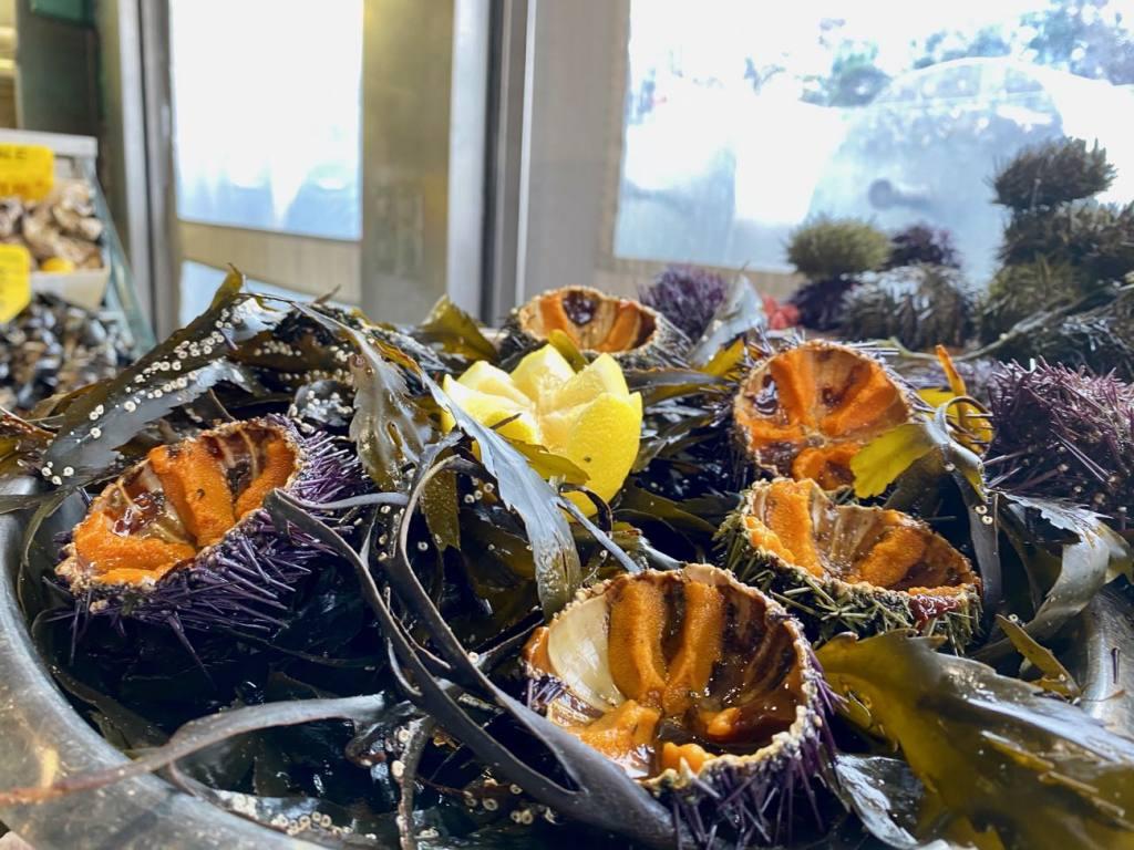 Toinou, sea food, Aix-en-provence, love-spots, urchins