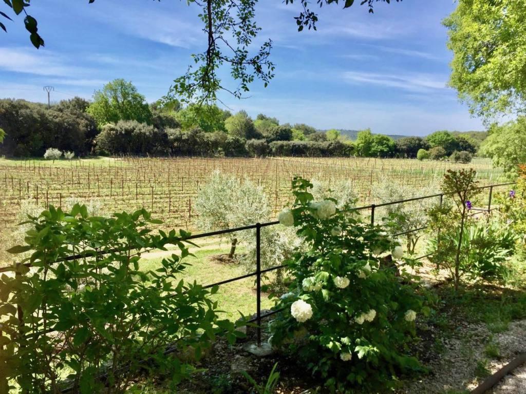 Boisson Art Centre, Contemporary Art, Aix, city guide Love Spots (view of the vines)